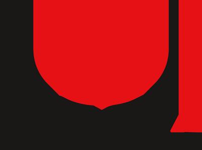DFSK importeur Nederland